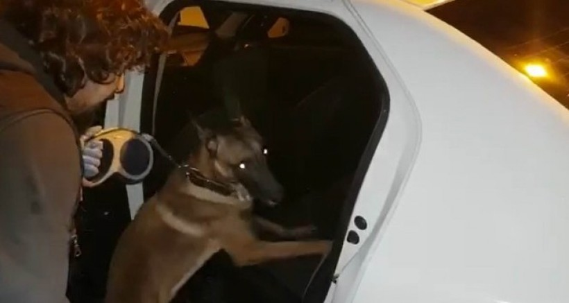 Güneykent Mahallesi'ne Narkotik köpeği İle Şok Operasyon
