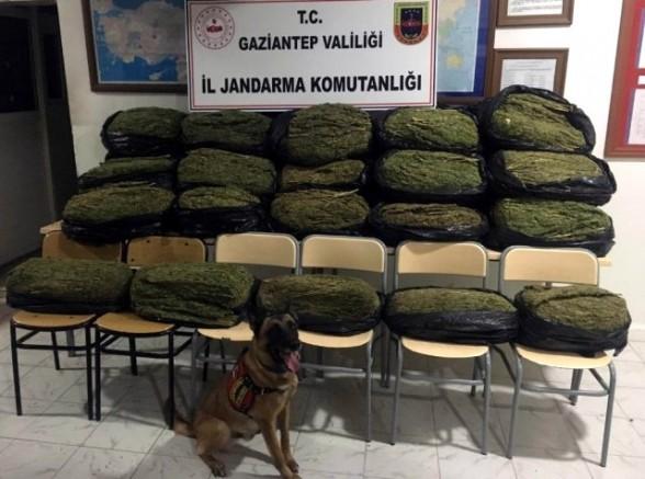 Jandarma'dan Uyuşturucu Tacirlerine Büyük Darbe, 200 Kilo Esrar Ele Geçirildi