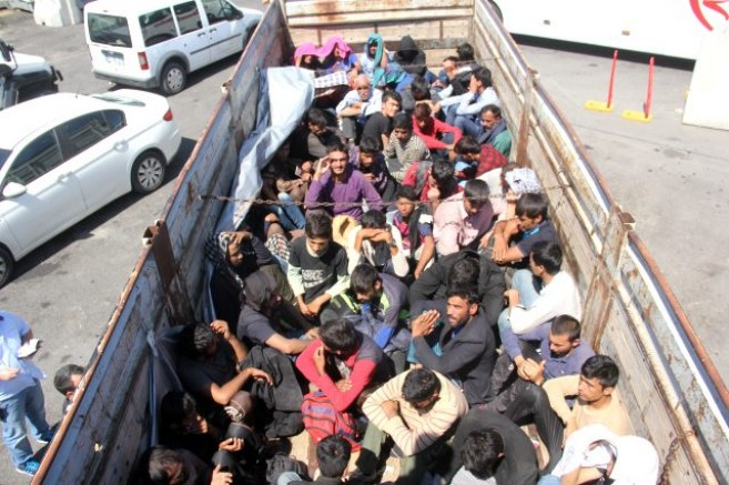 Kamyondan Koyun Sürüsü Yerine, 61 Kaçak Göçmen Çıktı